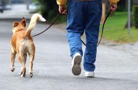 Jalutamine