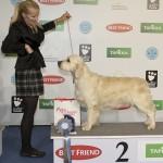Soome Võitja 2011: Greenhill's Cooper