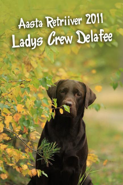 Ladys Crew Delafee